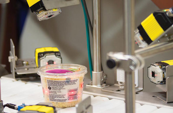 food industry vision inspection systems